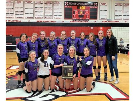 Girls Volleyball - IHSA Regional Champions