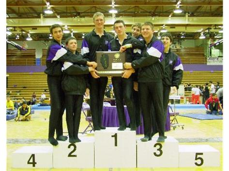 IHSA Sectional Boys Gymnastics Champions