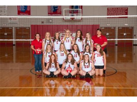 2015 JV Volleyball