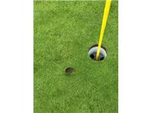 Senior Christopher O'Quinn's tee shot pitch mark to par 3 8th hole at Sportman's GC