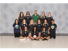 Varsity Girls Volleyball 2019-2020