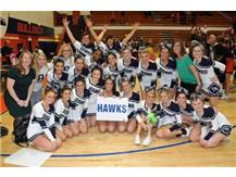 Varsity cheerleaders take 4th place at Sectionals which qualified them for State! Way to go Hawks!