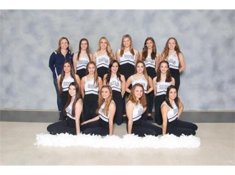 Competitive Dance Team 2016-2017