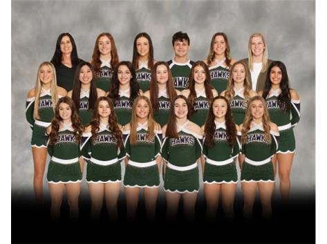 Competitive Cheer 2020-2021