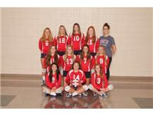 2018 JV Volleyball