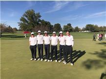 Boys Golf State Team