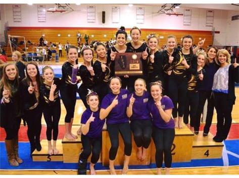 IHSA Gymnastics Sectional Champions 