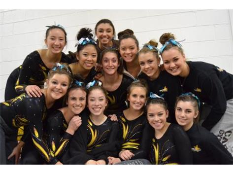 2016-17 Gymnastics Team