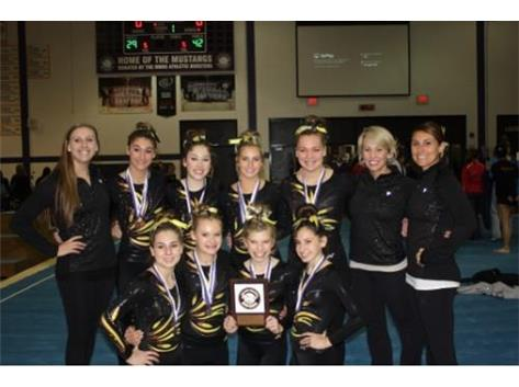 2017-18 Gymnastics