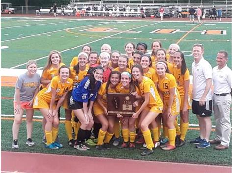 2018 IHSA 3A Sectional Champions!