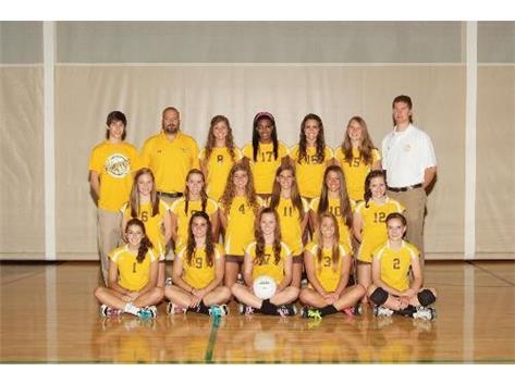 2011 Varsity Girls Volleyball IHSA Regional Champions