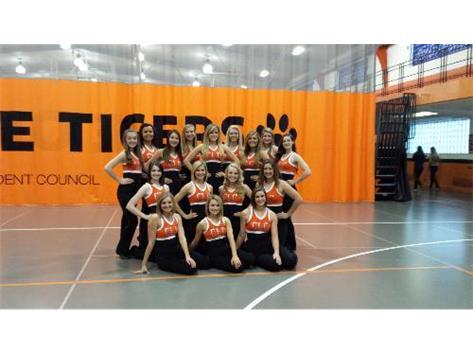 Varsity Dance Team 2013-2014