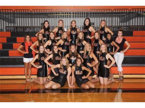 2014-15 VARSITY DANCE TEAM