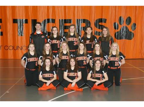 Girls Varsity Softball 2014-15