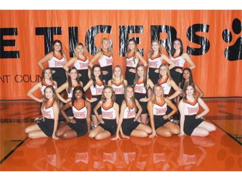 VARSITY DANCE TEAM 16-17