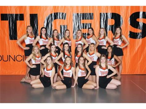 16-17 VARSITY COMPETITIVE DANCE TEAM