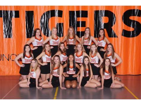 18-19 Varsity Competitive Dance Team