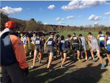 BOYS XC GETS OUT OF THE BOX TO START  STATE RACE 2015.