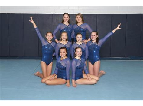 VARSITY GIRLS GYMNASTICS 2015-16