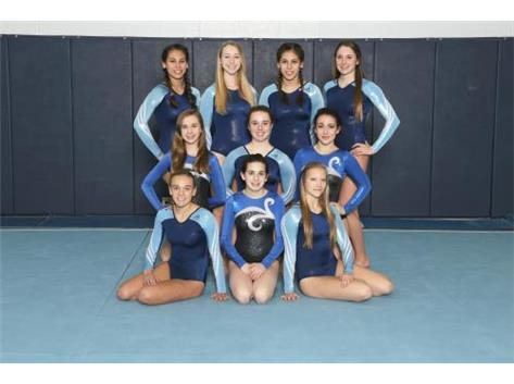 JV GIRLS GYMNASTICS 2015-16