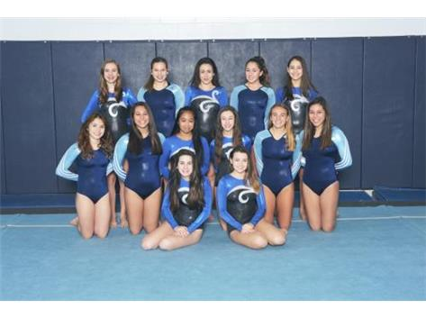 JV GIRLS GYMNASTICS 2016-17