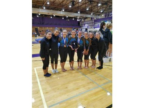 GYMNASTS 2ND AT BIG PURPLE 2017-18