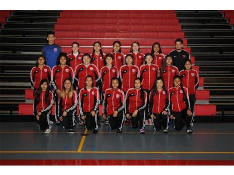 2018 F-S Soccer Team