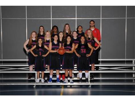 2018-2019 JV Girls Basketball Team