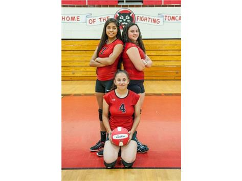 2016 Senior Volleyball Players