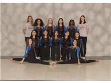 2019-2020 U46 JV Gymnastics Team