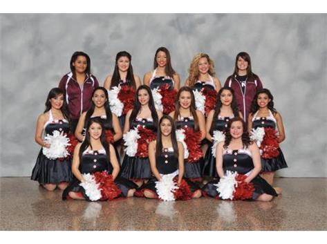 2014-2015 Varsity Dance Team