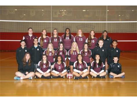 2015 Girls Varsity Volleyball Team