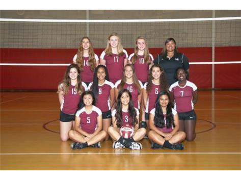 2015 Girls JV Volleyball Team