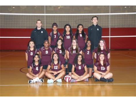 2015 Girls Sophomore Volleyball Team