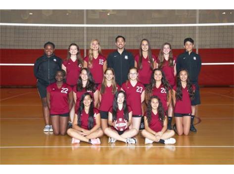 2015 Girls Freshmen Volleyball Team