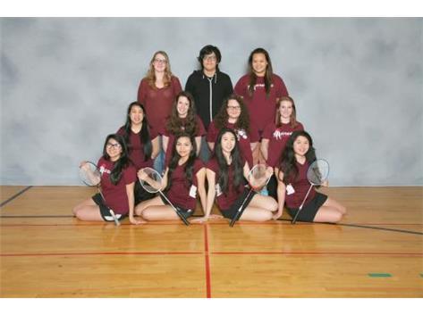 2016 Varsity Badminton Team