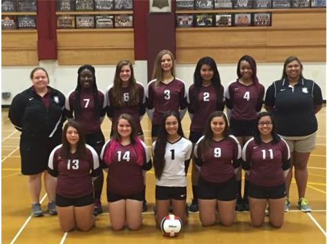 2016 Girls JV Volleyball Team