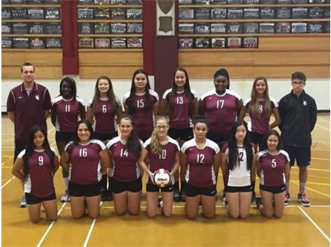 2016 Girls Sophomore Volleyball Team