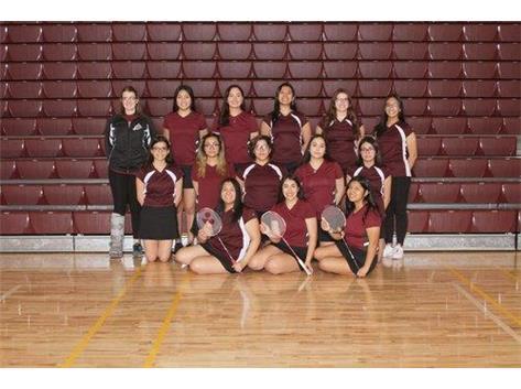 2020 Varsity Badminton Team
