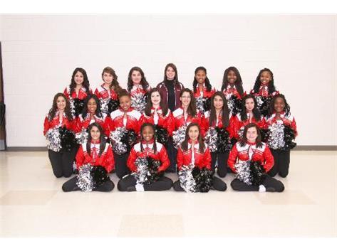 2012-2013 Dance Team