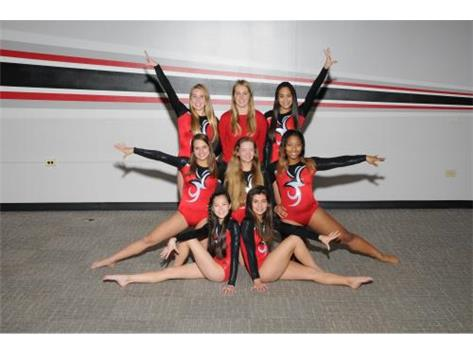 2016-17 Varsity Girls Gymnastics