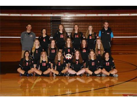 2017 Girls Volleyball JV