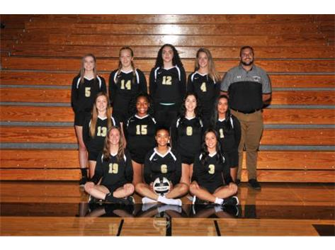 2018 - 2019 Girls JV Volleyball