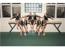 2015-2016 Girls Varsity Gymnastics team.