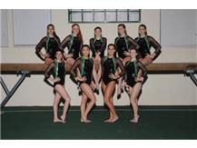 2016-2017 Girls Varsity Gymnastics
