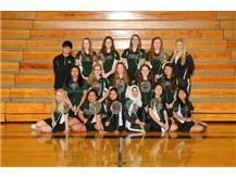 2016-2017  Varsity Badminton