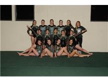 2019-2020 Girls JV Gymnastics