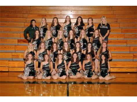 2014-2015 Dance Team