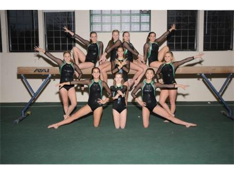 2014-15 Girls Gymnastics