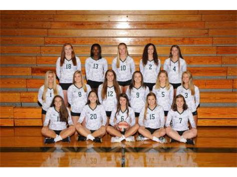 2016-2017 Varsity Girls Volleyball